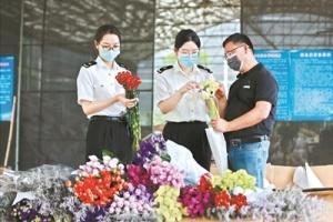 顺德花卉企业出口同比增长194.5%