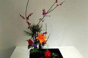 鲜花绿植租赁,关于插花的小技巧